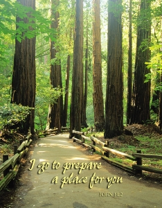 """Let Not Your Hearts Be Troubled"""" (Funeral sermon on John 14"""