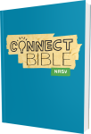 Connect Bible NRSV Paperback