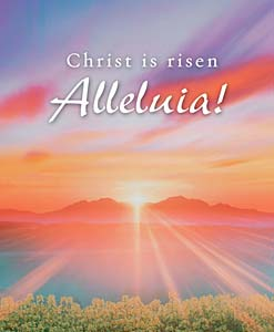 Christ is Risen Alleluia!: Easter Bulletin, Large Size: Quantity per package: 100