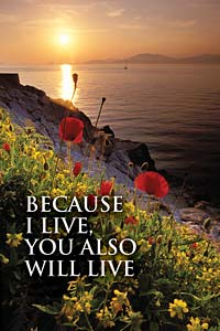 Because I Live, You also will Live: Funeral Bulletin, Regular Size: Quantity per package: 100