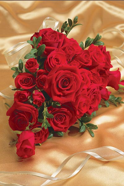 Red Roses: Wedding Bulletin: Quantity per package: 100