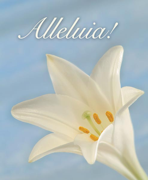 Alleluia!: Easter Bulletin, Large Size: Quantity per package: 100