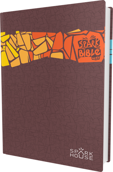 Spark Bible (NRSV) Gift Edition
