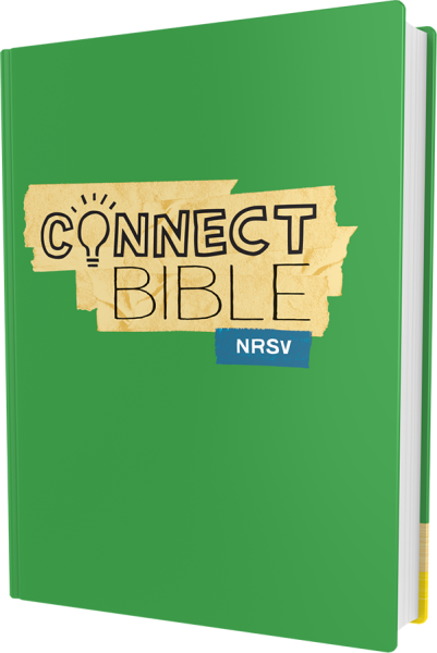 Connect Bible NRSV Hardcover