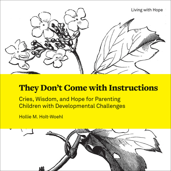They Don't Come with Instructions: Cries, Wisdom, and Hope for Parenting Children with Developmental Challenges (Paperback/eBook)