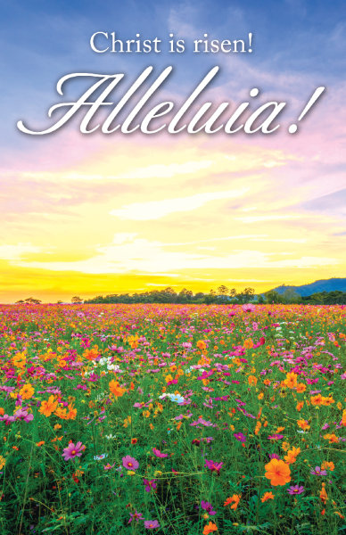 Alleluia Sunrise Bulletin, Regular Size: Quantity per package: 100